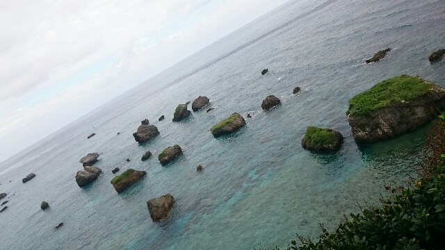 f:id:mikiharikae:20161128153948j:image
