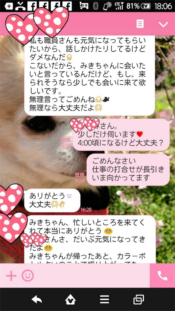 f:id:mikikochandesu:20171214183447j:image