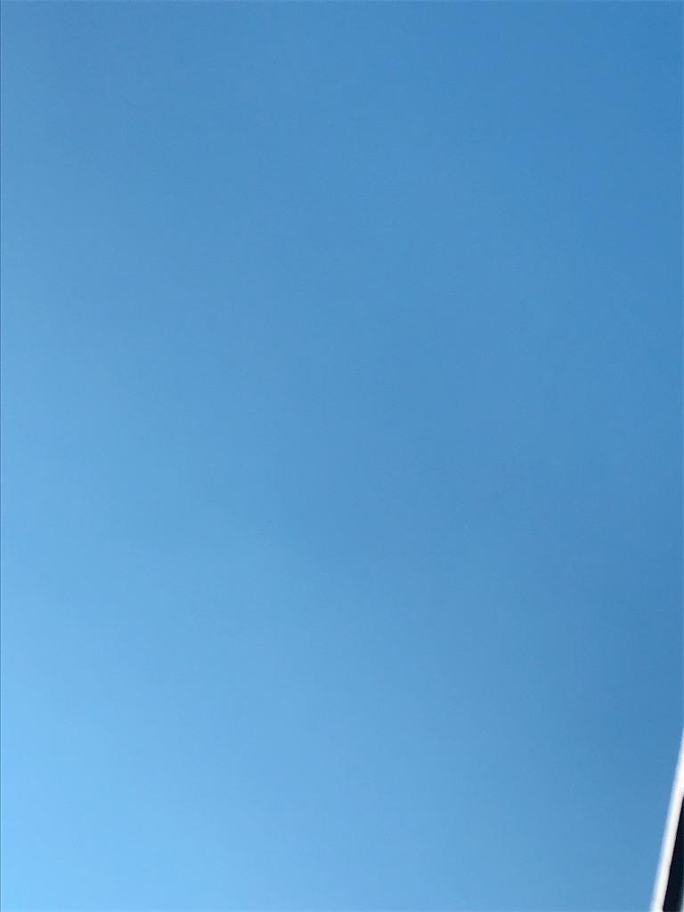 f:id:mikimikihanzawa:20210114125924j:image