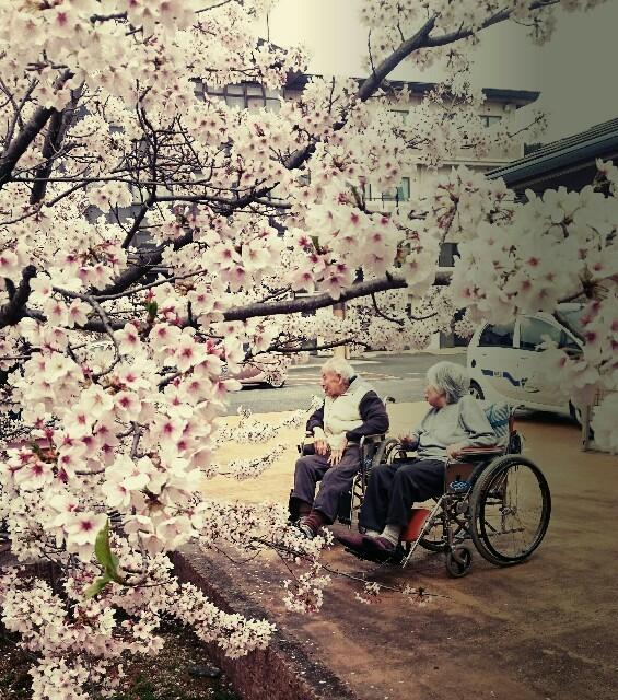 f:id:mikimiyamiki:20170508155745j:image