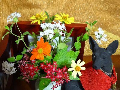 愛犬の命日に供えた花