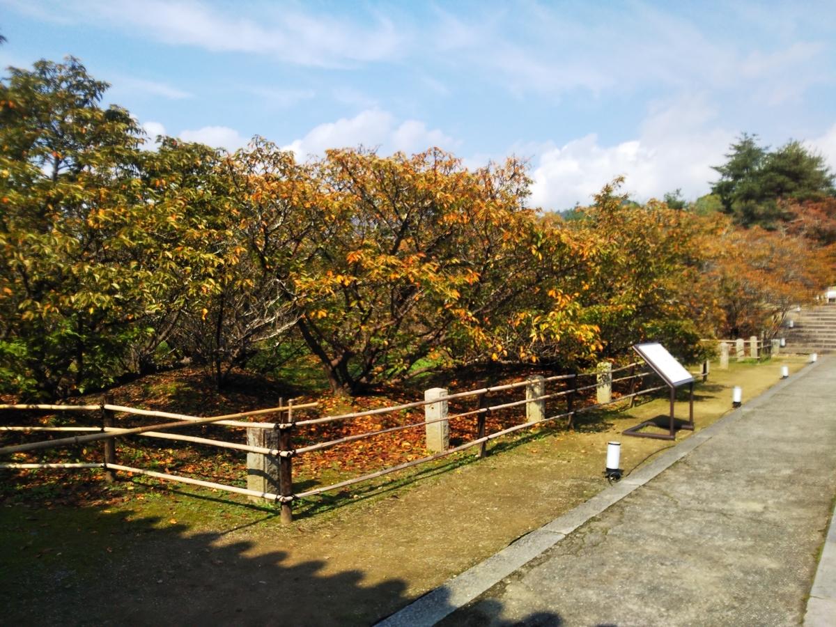 f:id:mikiyama:20201012160458j:plain