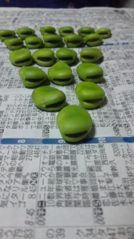 f:id:mikkabouzugadame:20100618135301j:image