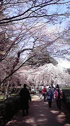 f:id:mikkabouzugadame:20110402213620j:image