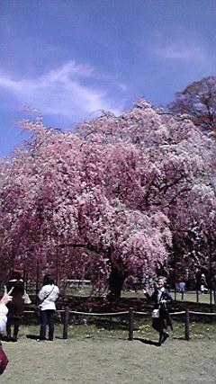 f:id:mikkabouzugadame:20110420203803j:image