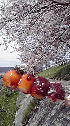 f:id:mikkabouzugadame:20110420204947j:image