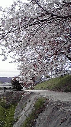 f:id:mikkabouzugadame:20110420204950j:image