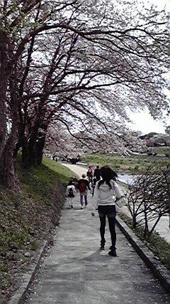 f:id:mikkabouzugadame:20110420204952j:image
