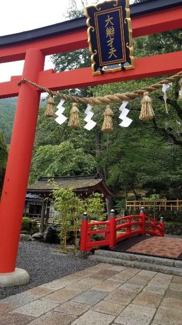 f:id:mikochibita:20180810001558j:image