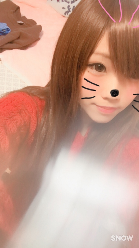f:id:mikofukusoba:20170313192959j:plain