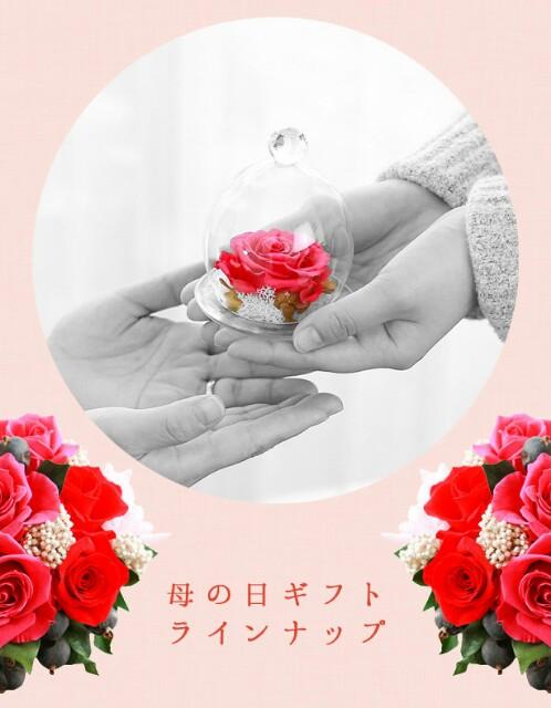 f:id:mikofukusoba:20170415170053j:image
