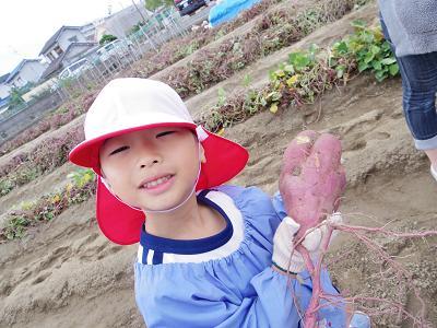 f:id:mikokoroblog:20131101221339j:image