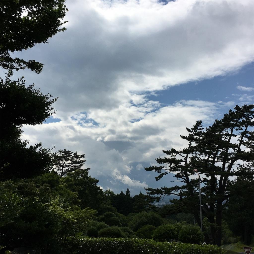 f:id:mikonekogorira:20160621183611j:image