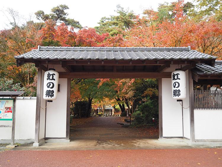 f:id:mikonekogorira:20161211225256j:plain