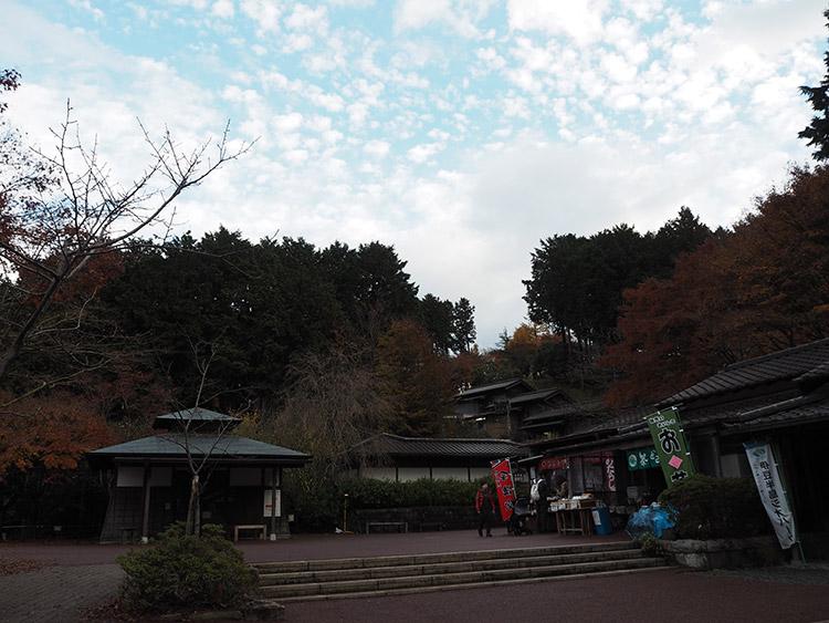 f:id:mikonekogorira:20161211225653j:plain