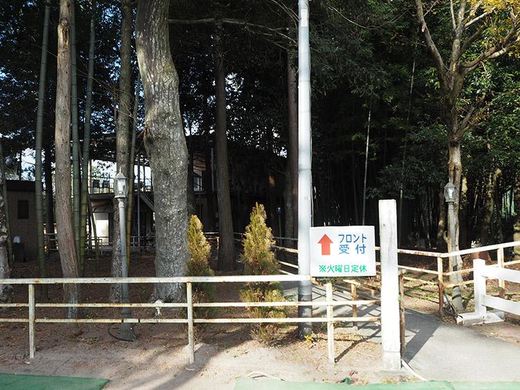 f:id:mikonekogorira:20170102225836j:plain