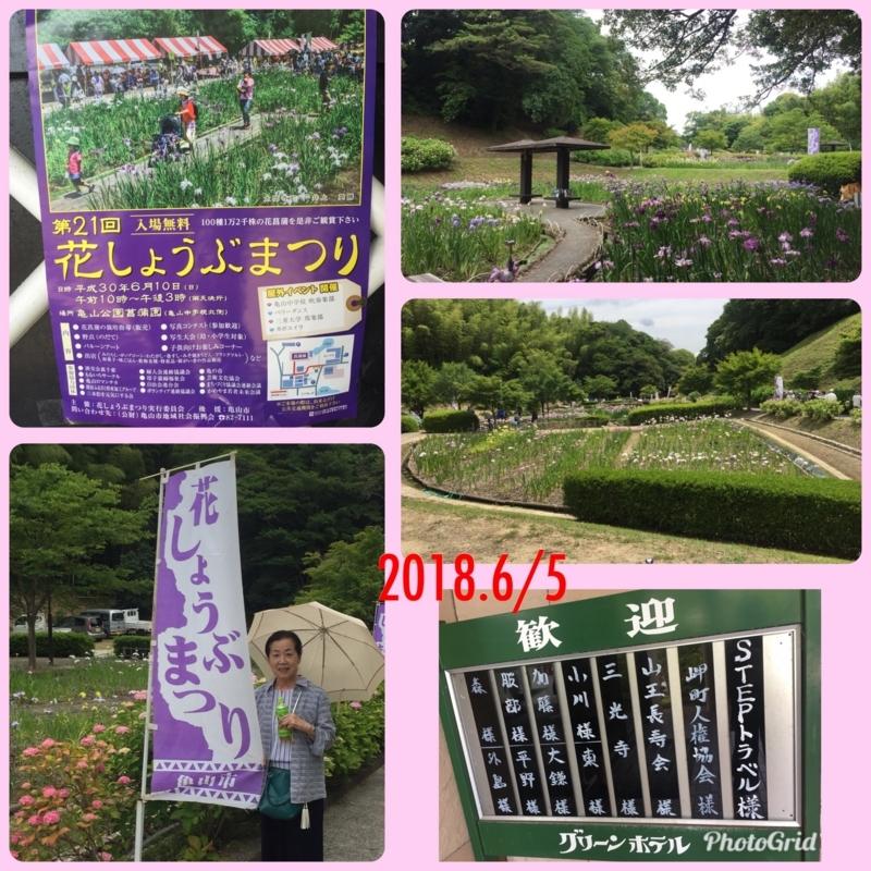 f:id:mikonishi1946:20180605211158j:image