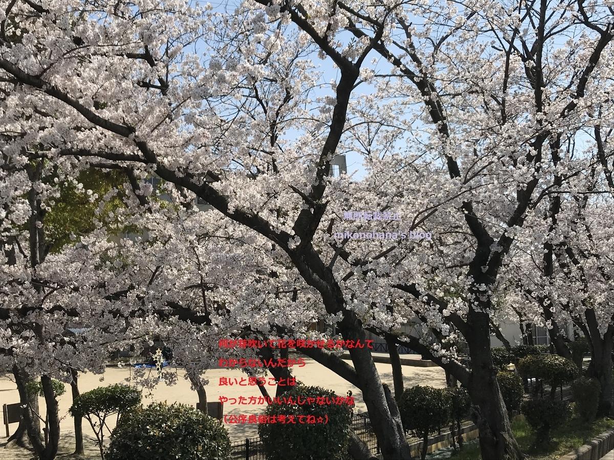 f:id:mikonohana:20210209174519j:plain