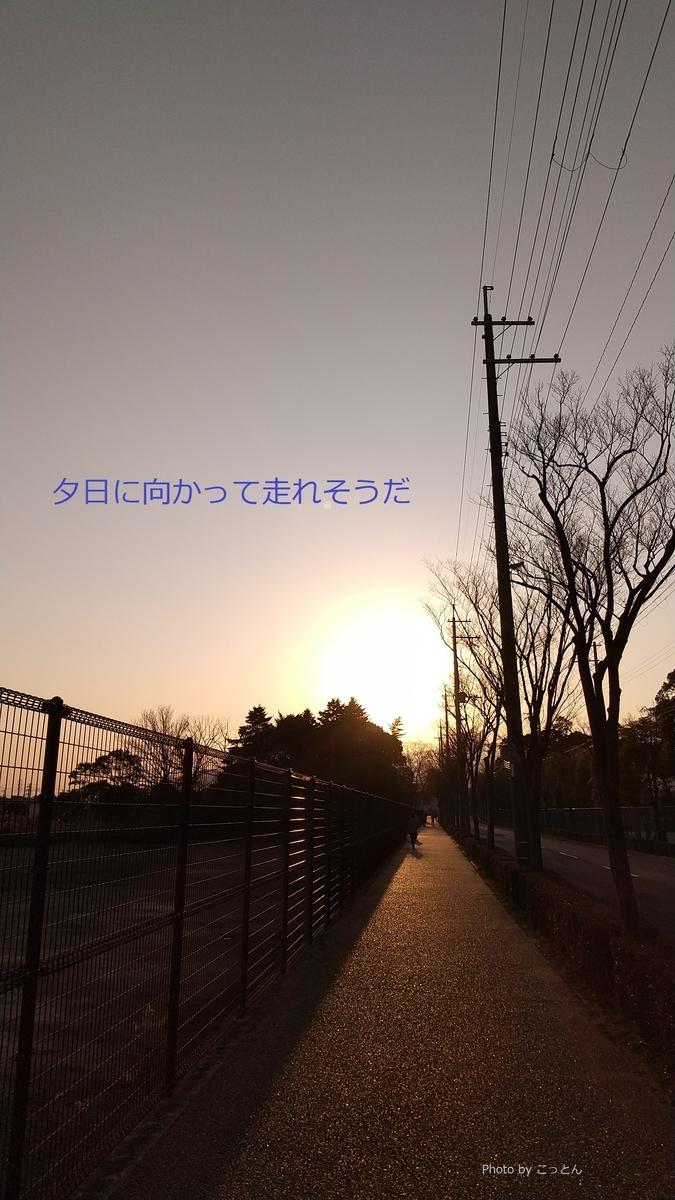 f:id:mikonohana:20210220213322j:plain