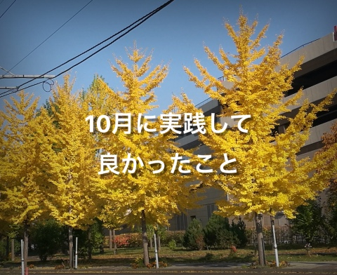 f:id:mikoto-koto:20171029222557j:plain