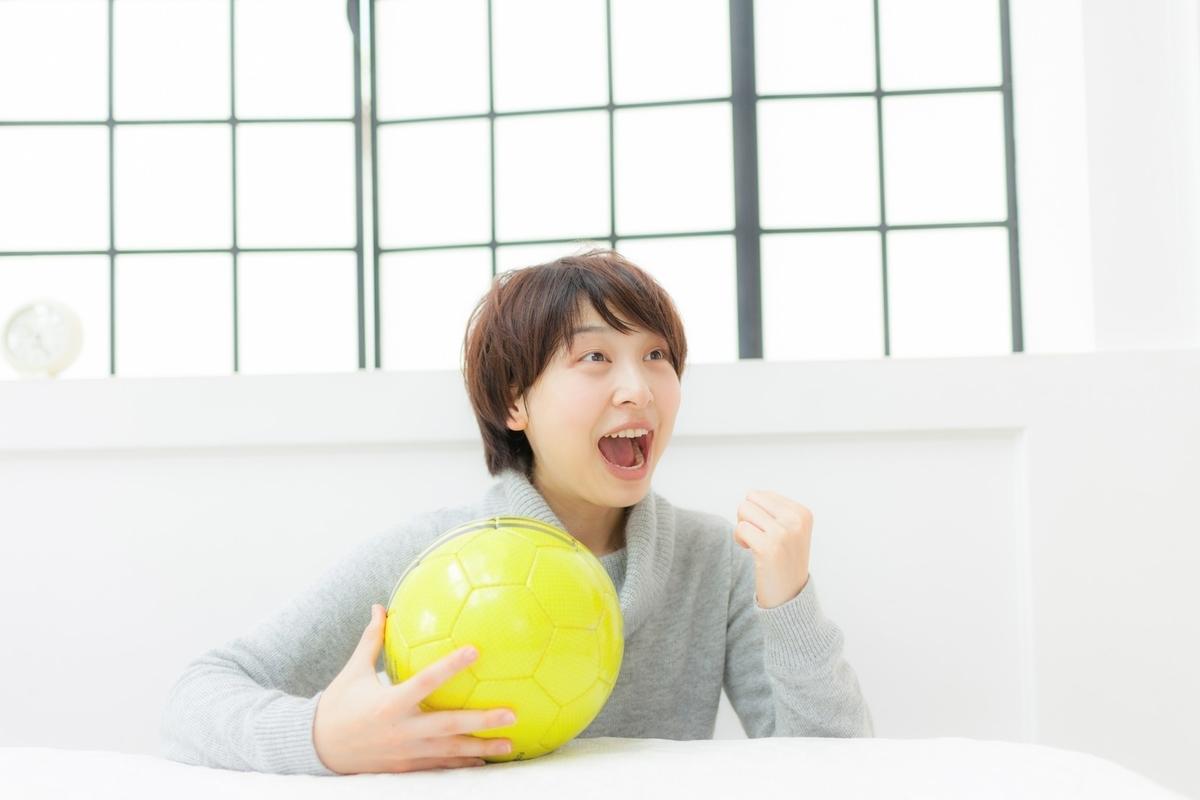 f:id:mikotomikaka:20190501192239j:plain