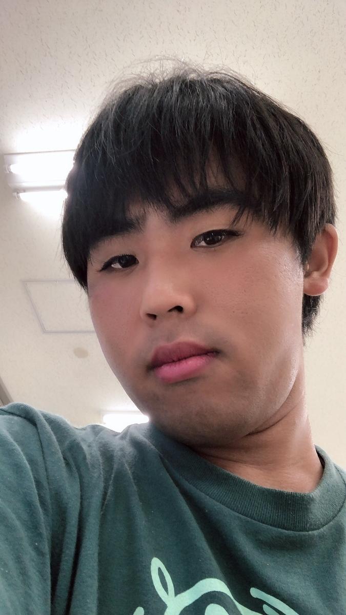 f:id:miku392:20190613124745j:plain