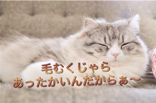 f:id:mikumama:20160107000338j:image