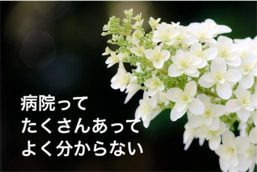 f:id:mikumama:20160109083913j:image