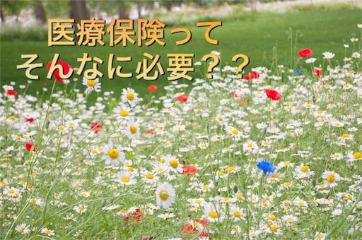 f:id:mikumama:20160122084828j:image