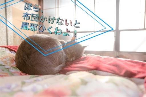 f:id:mikumama:20160122223207j:image