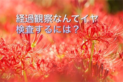 f:id:mikumama:20160124094511j:image