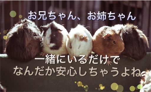 f:id:mikumama:20160208022633j:image