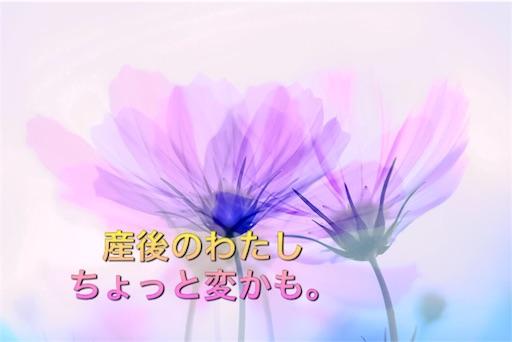 f:id:mikumama:20160229082349j:image