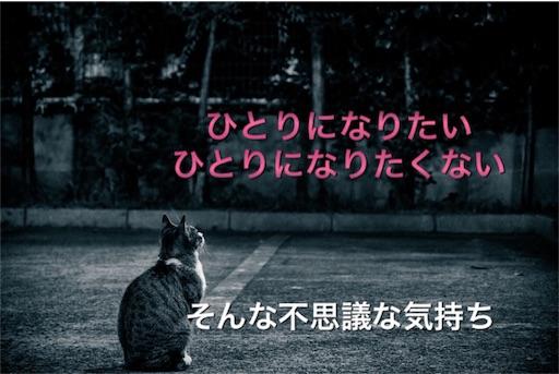 f:id:mikumama:20160417132853j:image