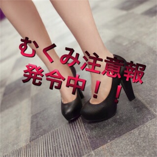 f:id:mikumama:20160506012952j:image