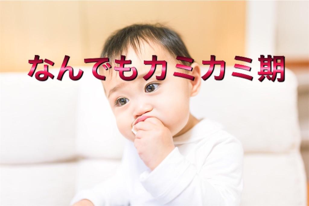 f:id:mikumama:20160803132233j:image
