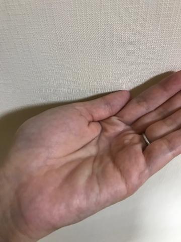 f:id:mikumama:20171120164410j:plain