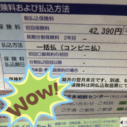 f:id:mikumama:20180808164837p:plain