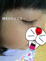 f:id:mikumama:20180808165026p:plain