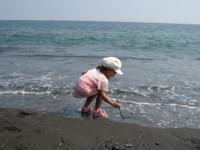 f:id:mikumiku0913:20090829130941j:image