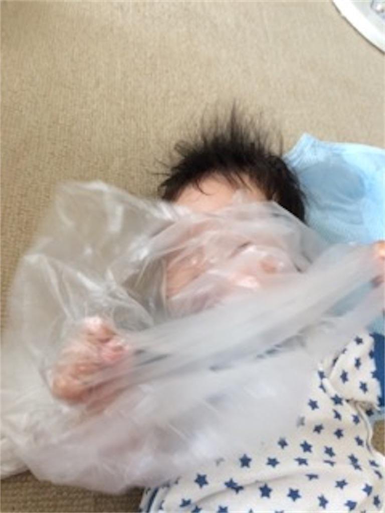 f:id:mikumoco:20170622225419j:image
