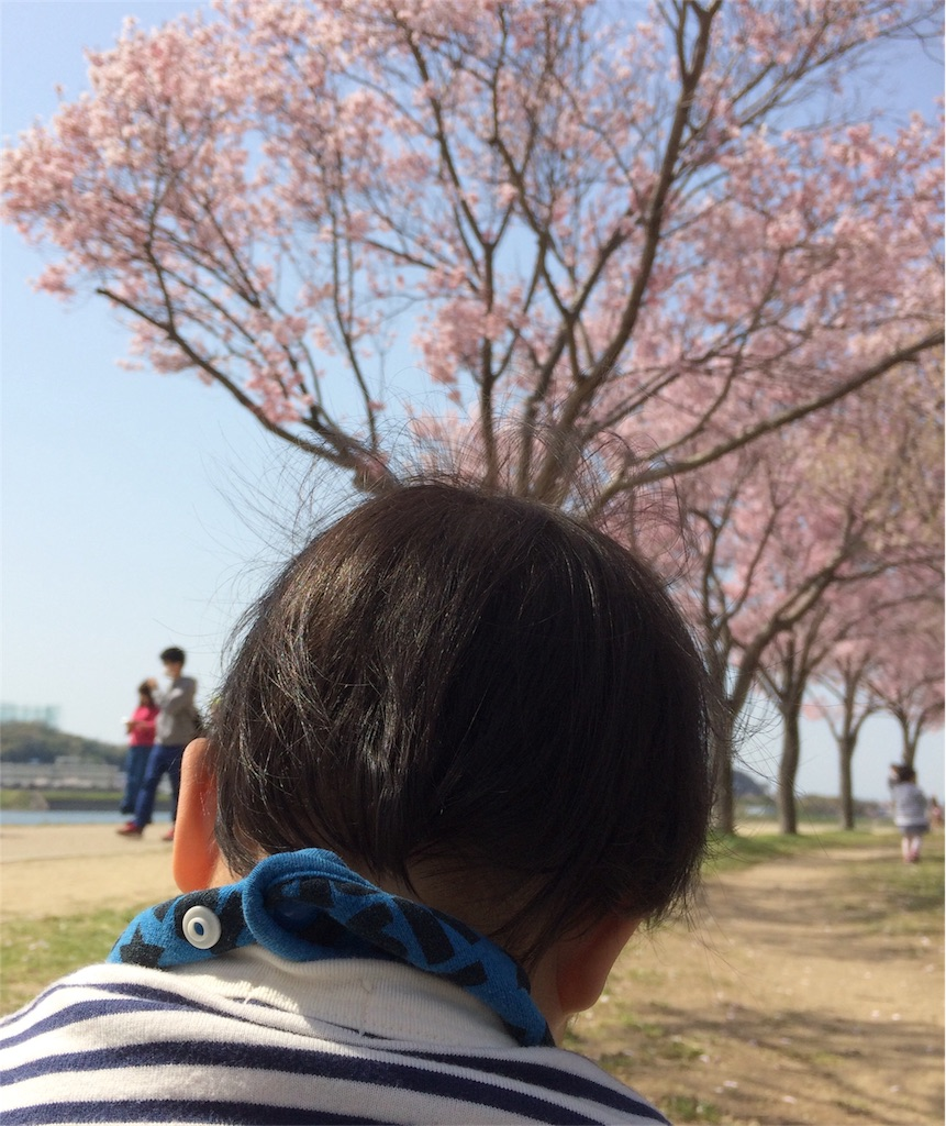 f:id:mikumoco:20180331200834j:image