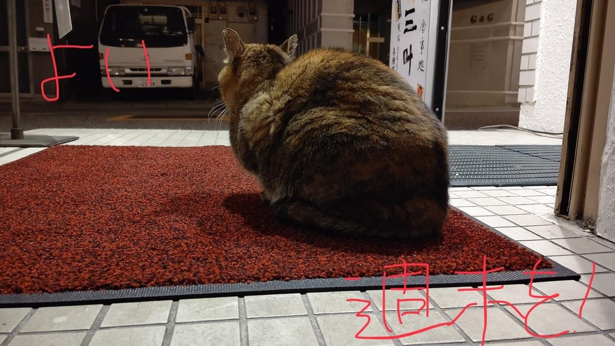 f:id:mikyo-ya:20210122110111j:plain