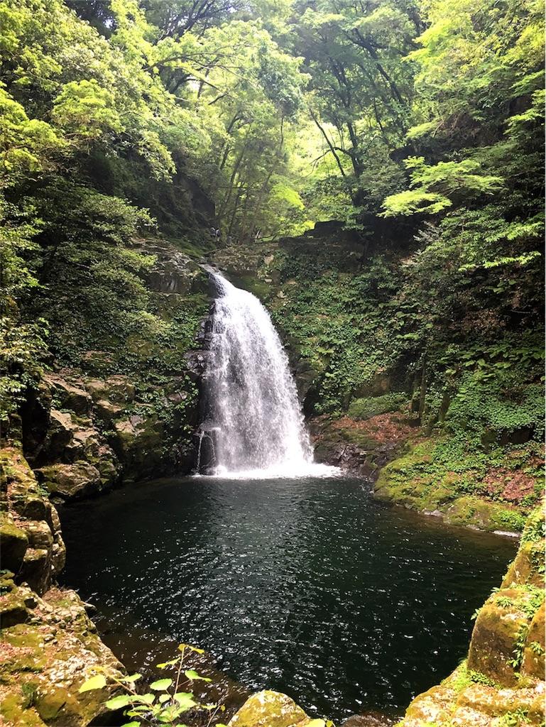 f:id:mile-de-aloha:20170606084202j:image