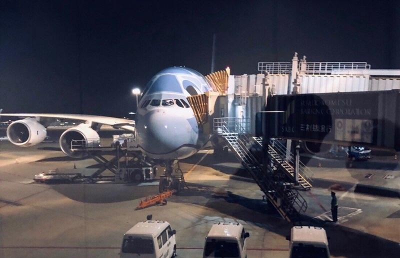 ANAホノルル線の新機材A380フライングホヌ 成田空港夜便