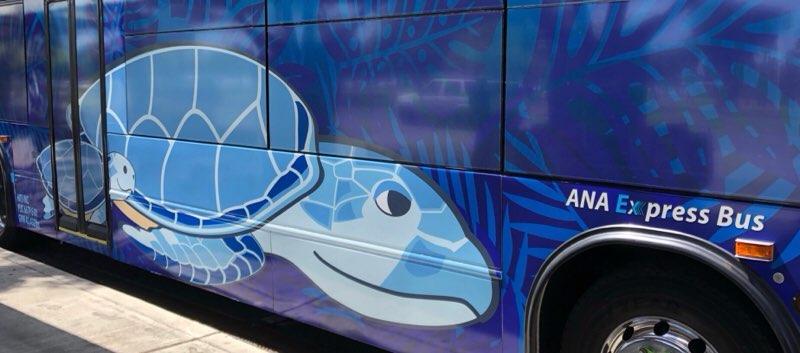 ハワイのANAエクスプレスバスの車体デザイン