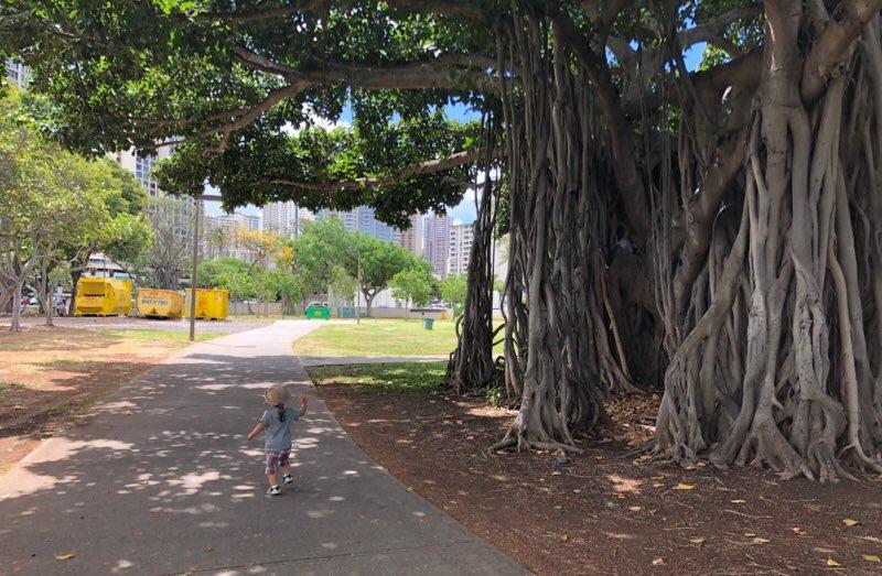 ハワイのアラモアナ公園