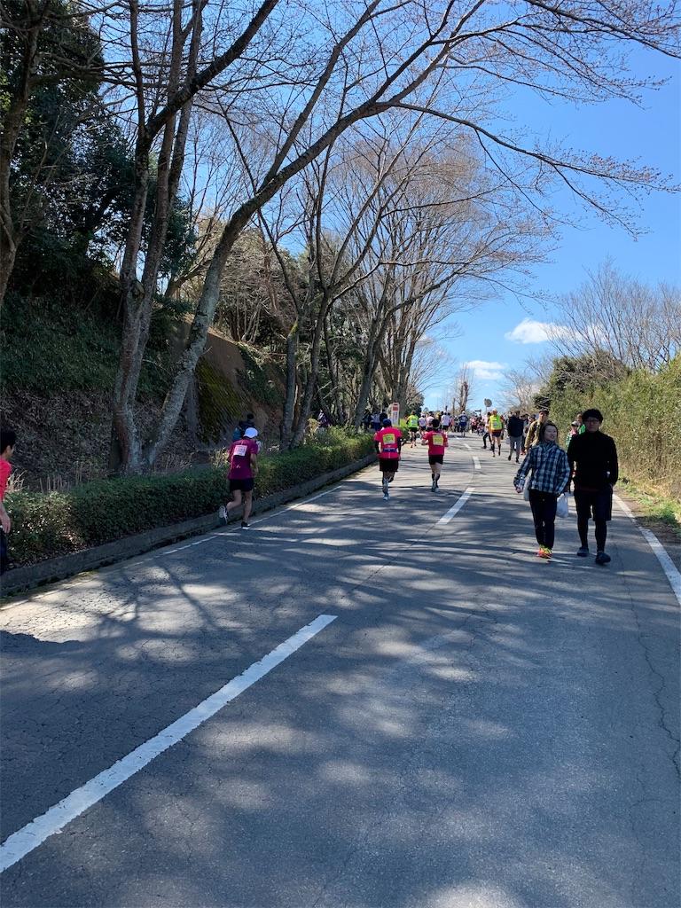 f:id:mile-runner29:20190324151642j:image