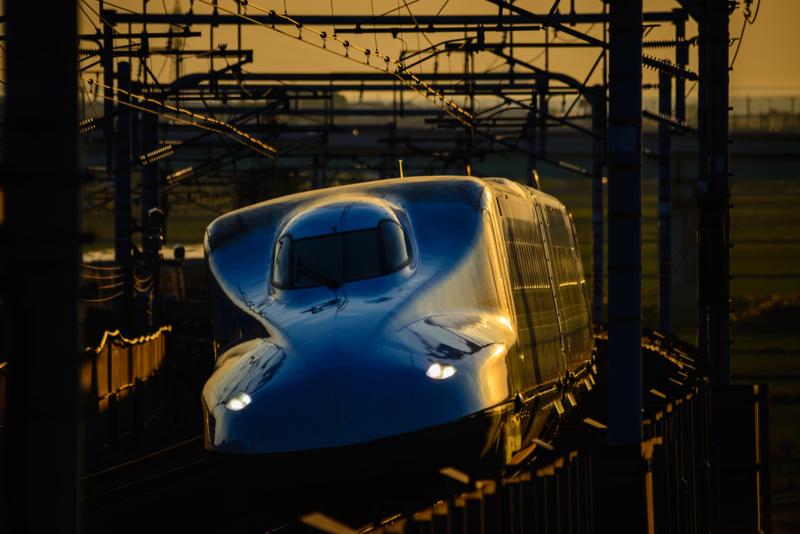 『京都新聞写真コンテスト 黄金色の夕刻』