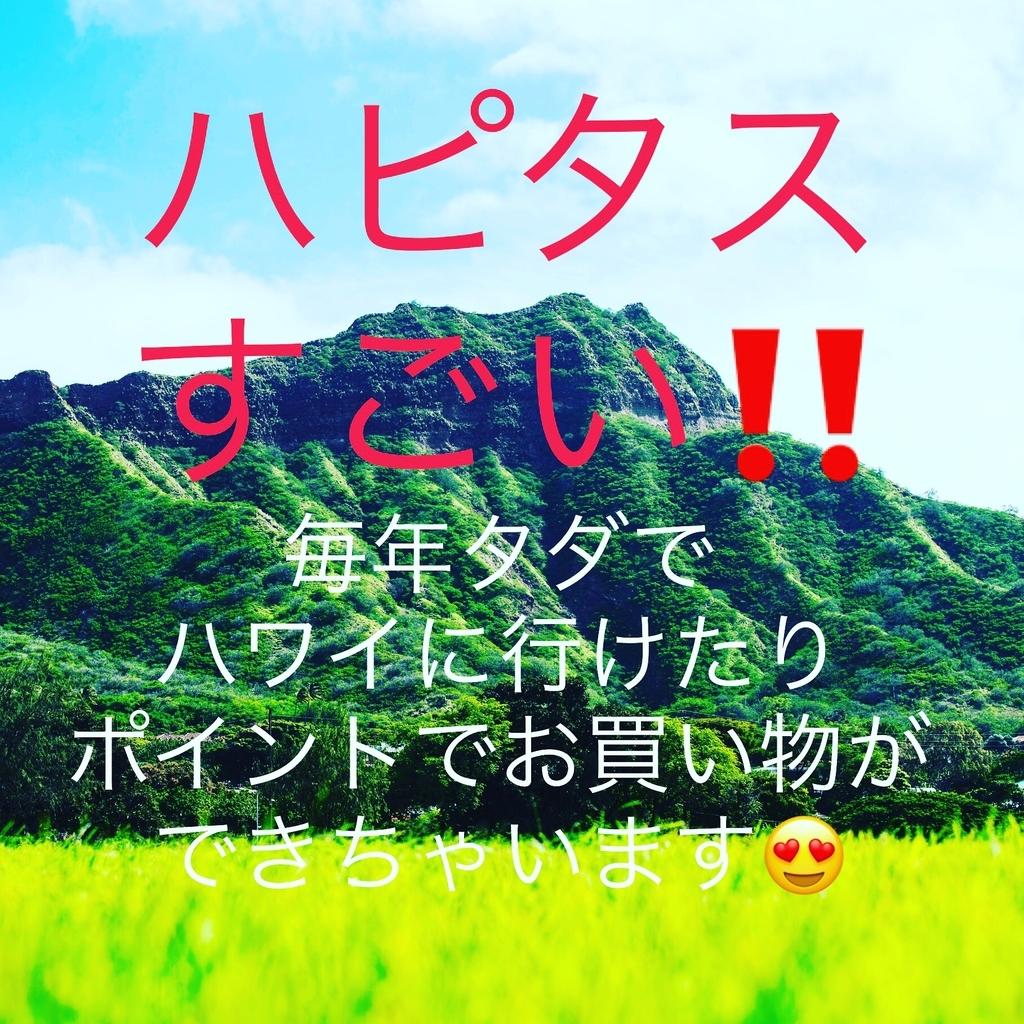 f:id:milerchukimi:20190127225629j:plain